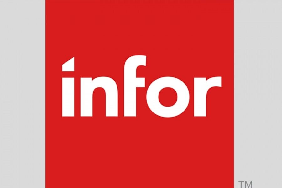 THE GLOBAL ERP INFOR LN